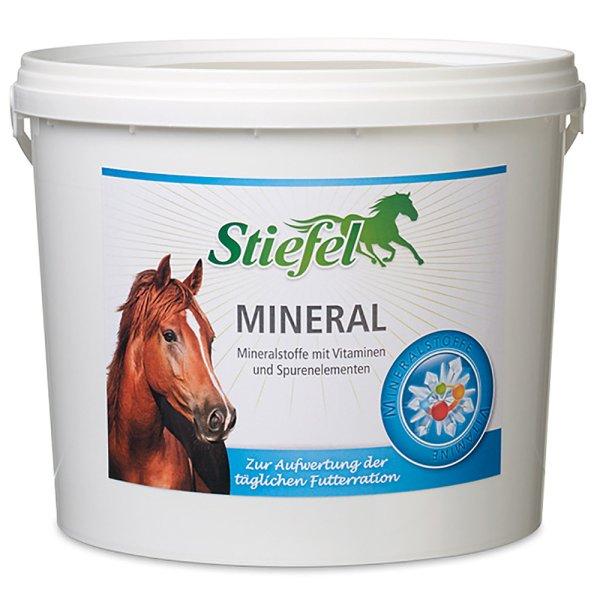 Akú úlohu majú vitamíny  vo výžive koní?